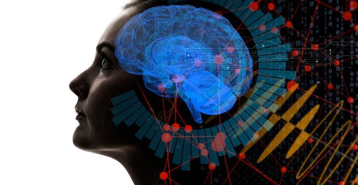 Gözler ve beyin